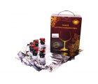 Bag in Box для вина 6 штук в коробке (Beervingem)