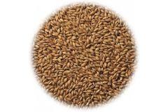 Солод ячменный копченый Cookie Malt EBC 40-70 (Viking Malt) 1 кг